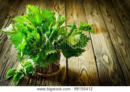 Bunch Of Fresh Green Nettle On The Wooden Background