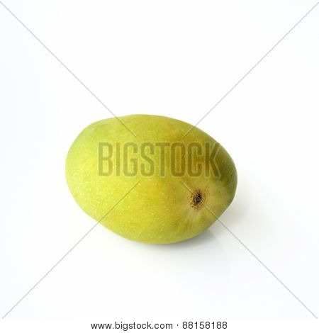 Green Unripe Alphonso Mango
