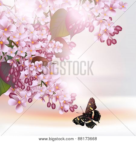 Floral Romantic Background With Lilac Flowers
