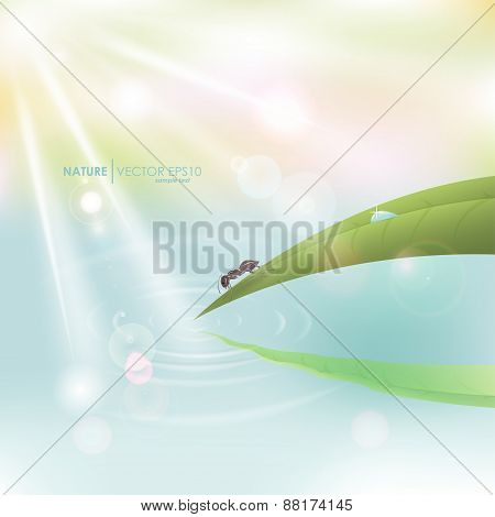 Vector macro natural bright background. Green grass with dew and