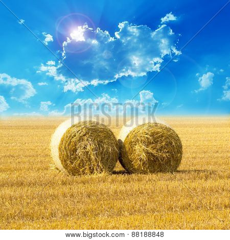 Hay Bail Harvesting In Golden Field And Sunset
