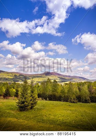 Landscape Of Mountains And Forest