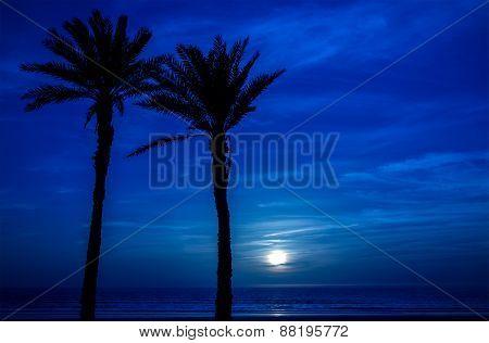 Moon In Agadir, Morocco