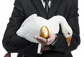 foto of laying eggs  - Businessman holding a goose that lays golden eggs - JPG