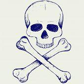 stock photo of skull crossbones  - Skull and crossbones - JPG