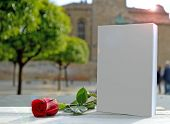 foto of single white rose  - A white book on a white wooden table - JPG