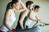 picture of treadmill  - Young people training on a treadmill in the gym - JPG