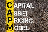 foto of asset  - Business Acronym CAPM as Capital Asset Pricing Model - JPG