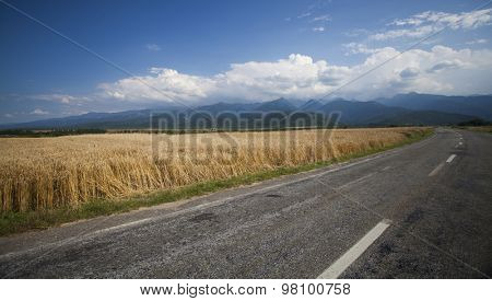 Road along edge of a wheaten field, blue sky and mountains in background
