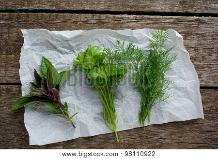 Fresh herbs. Dill, basil and parsley on rustic background