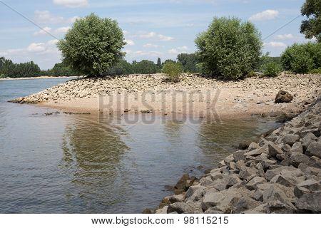 Shore of the Rhine (Rhein)