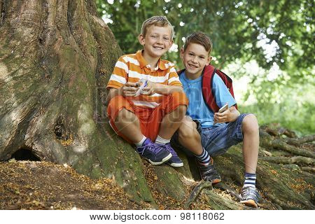 Two Boys Geocaching In Woodland