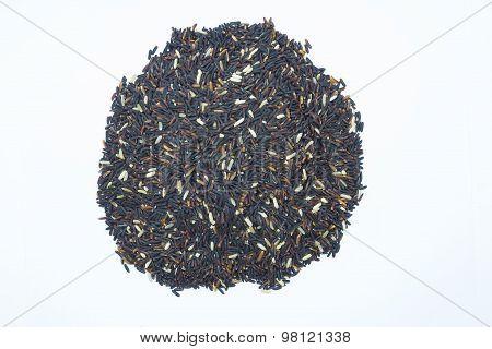 Organic Black rice on white