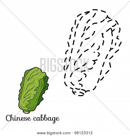 Connect The Dots: Fruits And Vegetables (chinese Cabbage)