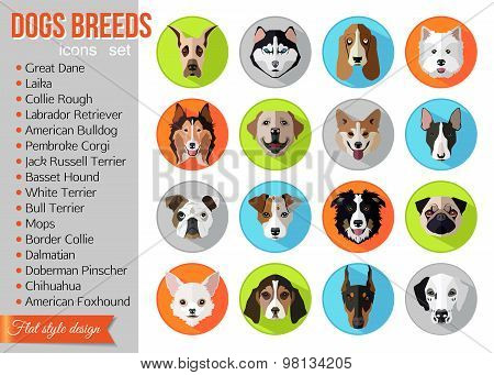 Set of flat popular breeds of dogs icons.