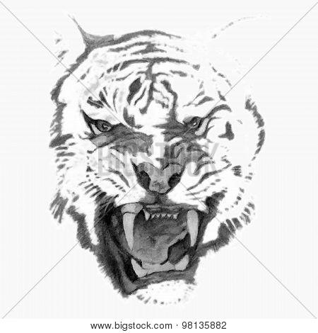Tiger head (pencil)
