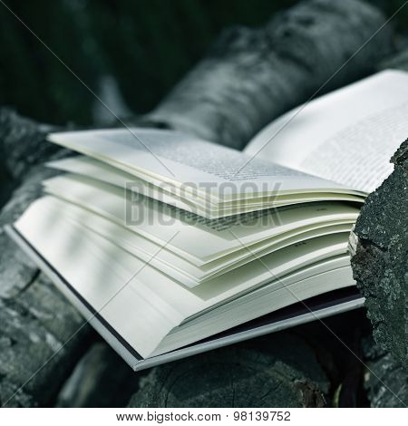 closeup of an open book outdoors in a rustic scenery with some tree trunks in the background