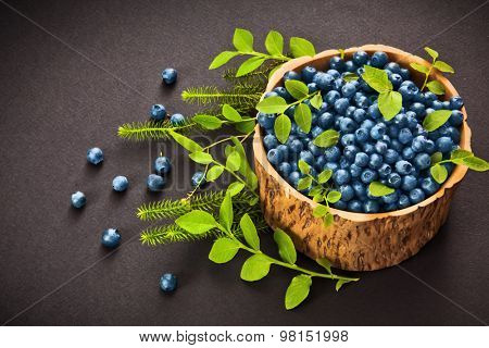 Forest blueberries with green leaves on black background