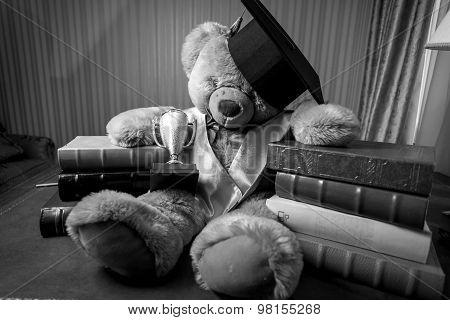 Monochrome Shot Of Teddy Bear In Graduation Hat Sitting On Table