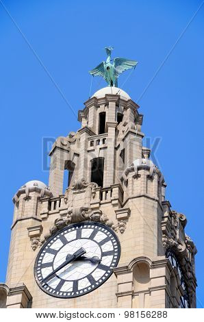 Royal Liver Building and bird, Liverpool.
