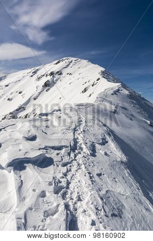 Trail On The Ridge In Winte