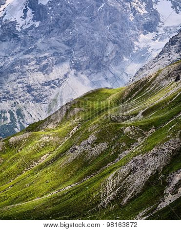 Mountain Scenery - Grass And Rocks