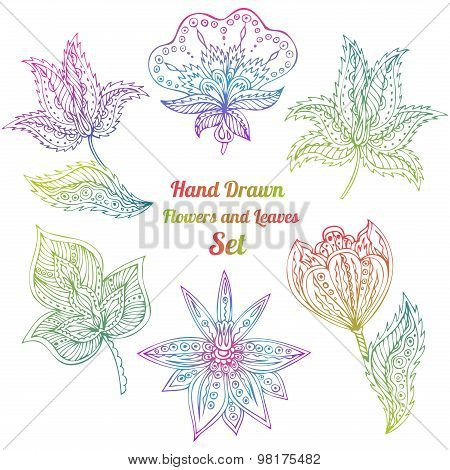 Colorful Line Art Flowers And Leaves