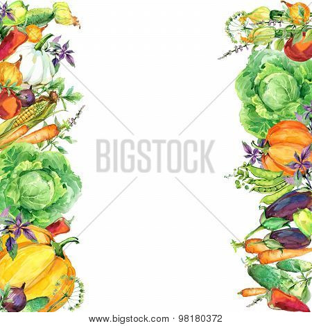 Assorted raw organic vegetables. watercolor illustration. watercolor vegetables and herbs background