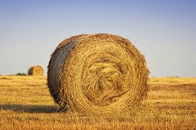 image of haystacks  - Haystack in the field close up view - JPG
