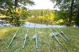 picture of rod  - Six old fishing rods catch fish on the river - JPG