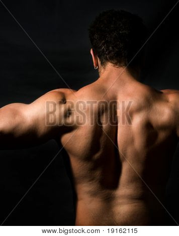 Low key image of muscular male back