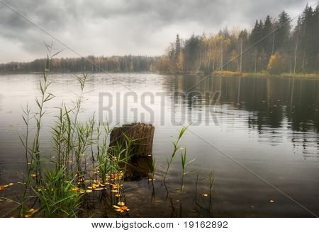Gloomy autumn lake. It is photographed in Russia. 60 kilometers from Moscow.