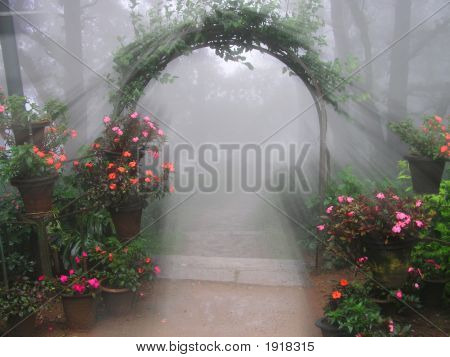 Mystical Flower Entrance