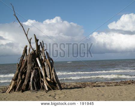 Bone Fire Wood