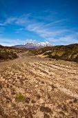Way To Mt Ruapehu - New Zealand
