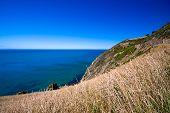 Ocean View - New Zealand
