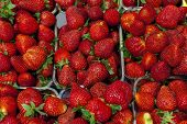 Ripe juicy strawberries closeup. Great background for a label jam, berry jam, strawberry juice, frui poster