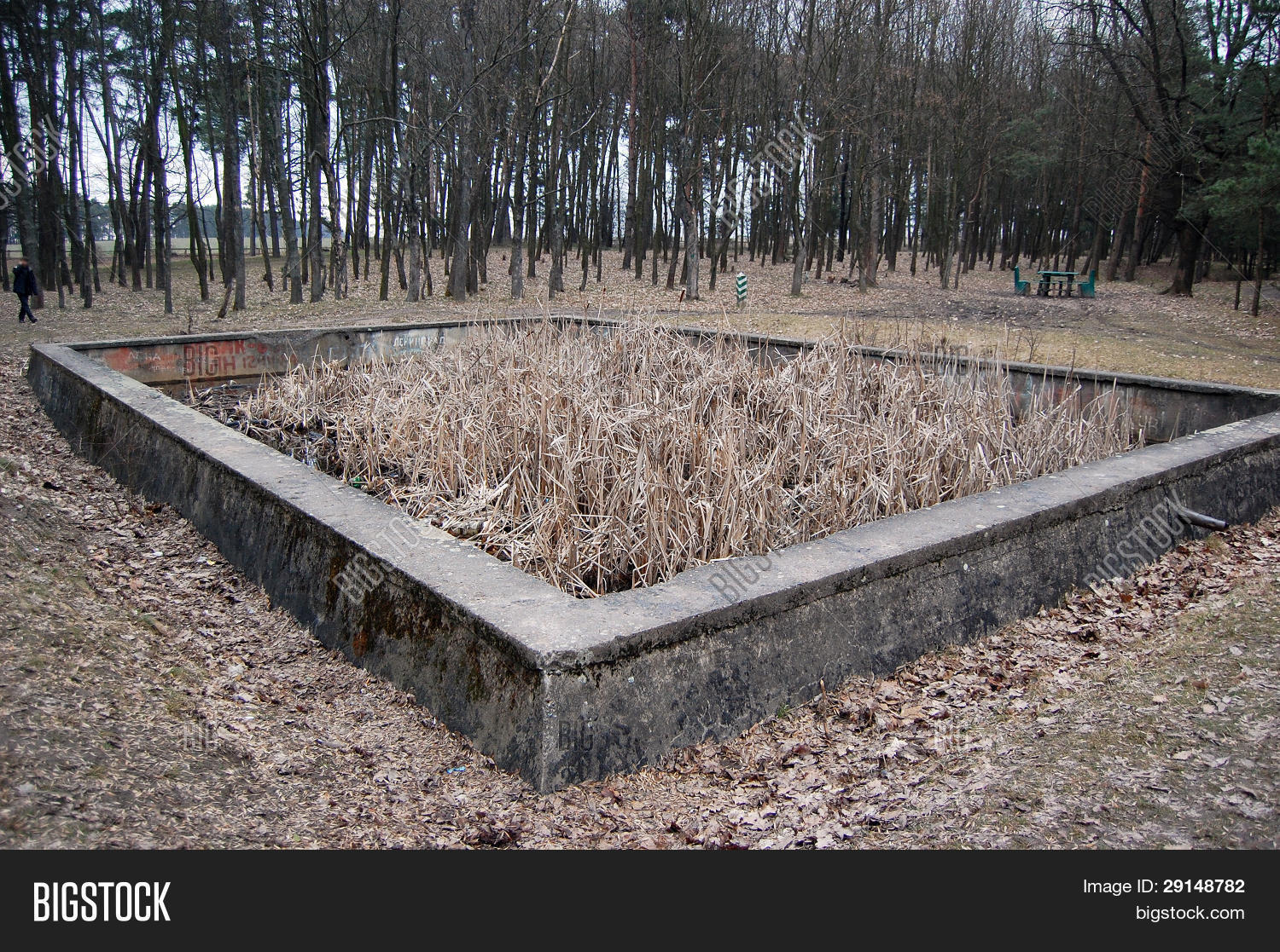 a study on where was the remains of adolf hitler Mystery surrounded the death of adolf hitler for many years however, more is  now thought to be  the history learning site, 18 may 2015 12 sep 2018.