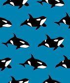 Vector Seamless Pattern Of Hand Drawn Killer Whale Swimming On Blue Background poster