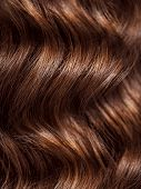 Girl with long, curly hair, rear view. Hair texture, close-up. Long brown curly hair - back view. poster