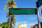 Blank Street Sign On Sunny Urban Landscape With Palm Trees And Yellow Building. Green Metallic Sign  poster