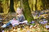 Adorable Little Girl Picking The First Flowers Of Spring In The Woods On Beautiful Sunny Spring Day poster