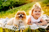 Little Girl And Pets. The Girl And A Dog Lying On A Blanket On A Green Park. Sunset Time. Pedigree D poster