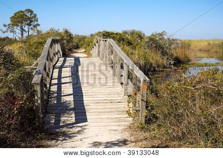 Arched Wooden Foot Bridge In Florida Wetland