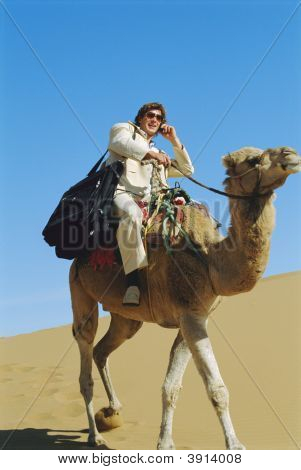 Business Man Riding Camel Across Desert On Cell Phone