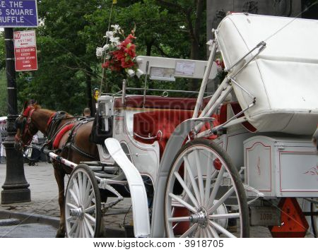 Horse Carriage In New York City