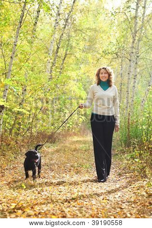 Young Woman Walking With Black Labrador Retriever Puppy