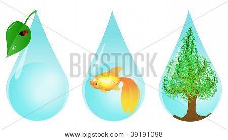 Environmentally friendly water drops.
