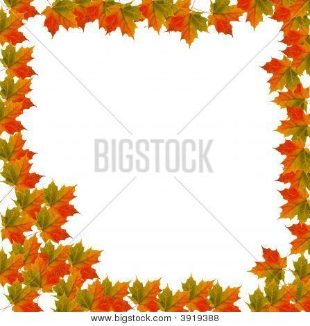 Autumn Leaf Thanksgiving Border Background