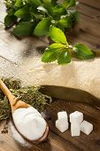 Unhealthy sugar on a wooden table together with natural sweetener stevia in powder, dried and fresh